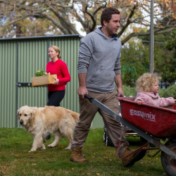 Family and garden sheds