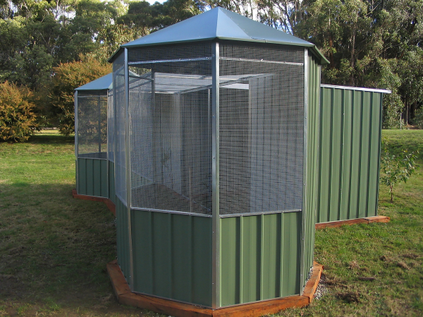 Double Hex Roof Aviary with Flight