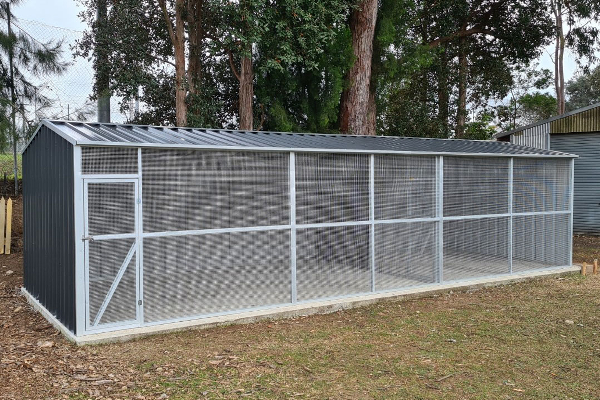 Gable Roof Aviary with Divider