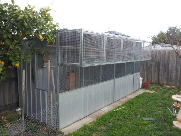 Custom build heavy duty aviary