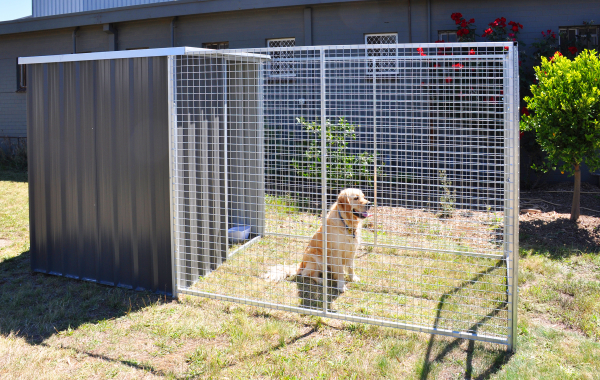 Dog Pen / Enclosure For Safety