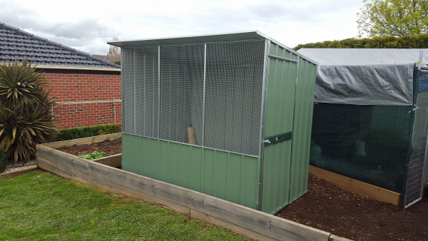 Chicken Coop with Wire Mesh