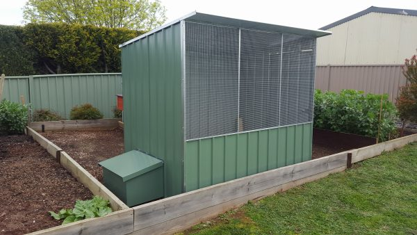 Chicken Coop with Layer Box