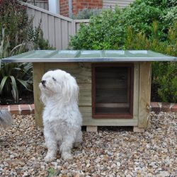 Wooden & Timber Dog Kennels title=