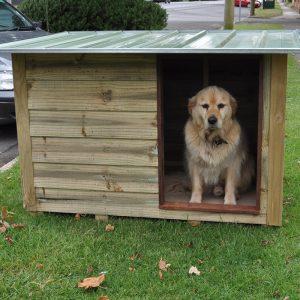 Timber Dog Kennel